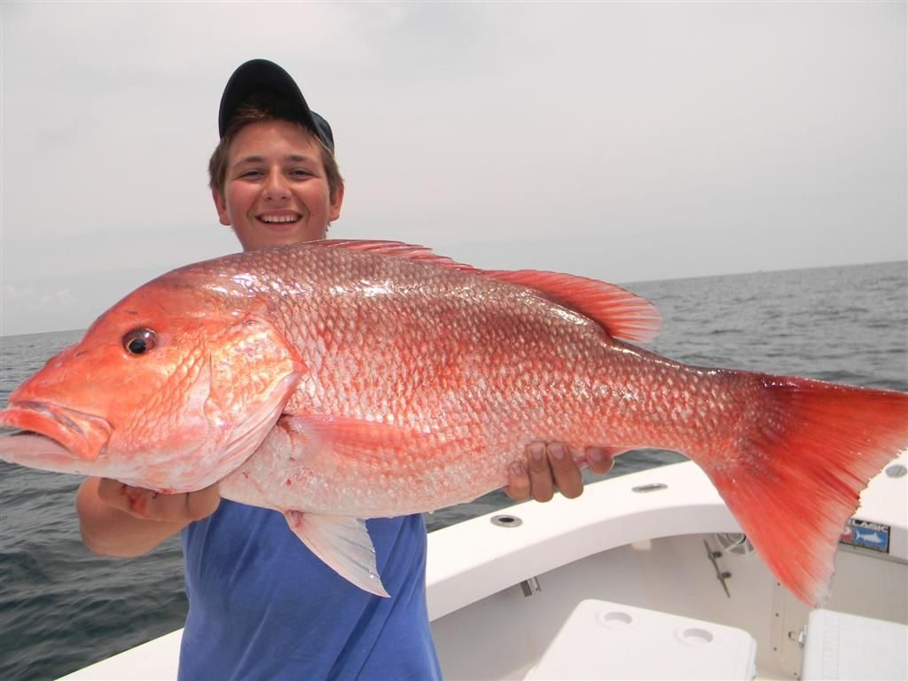 Alabama Gulf Coast Fishing Spots
